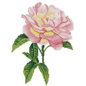 Diamond Dotz Kit - Pink Rose